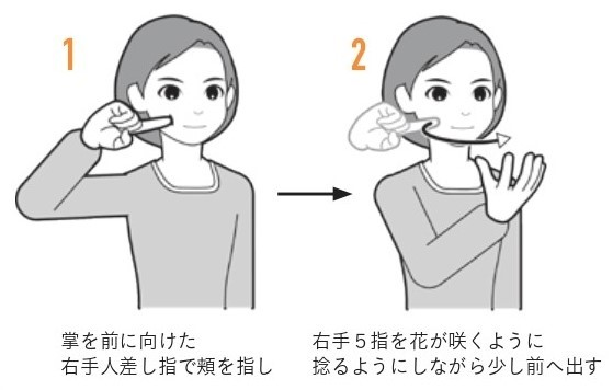 "Sign language expression of ""blooming"""